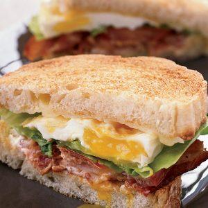 Egg Sauce Sandwich